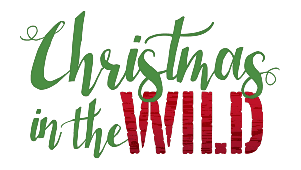 Lowry Park Zoo Christmas 2020 Christmas in the Wild   ZooTampa at Lowry Park