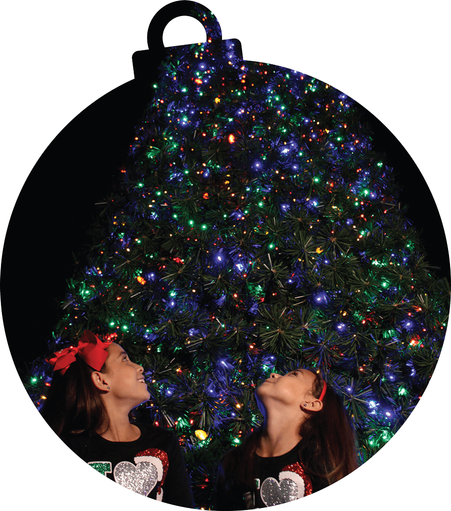 Christmas in the Wild - ZooTampa at Lowry Park