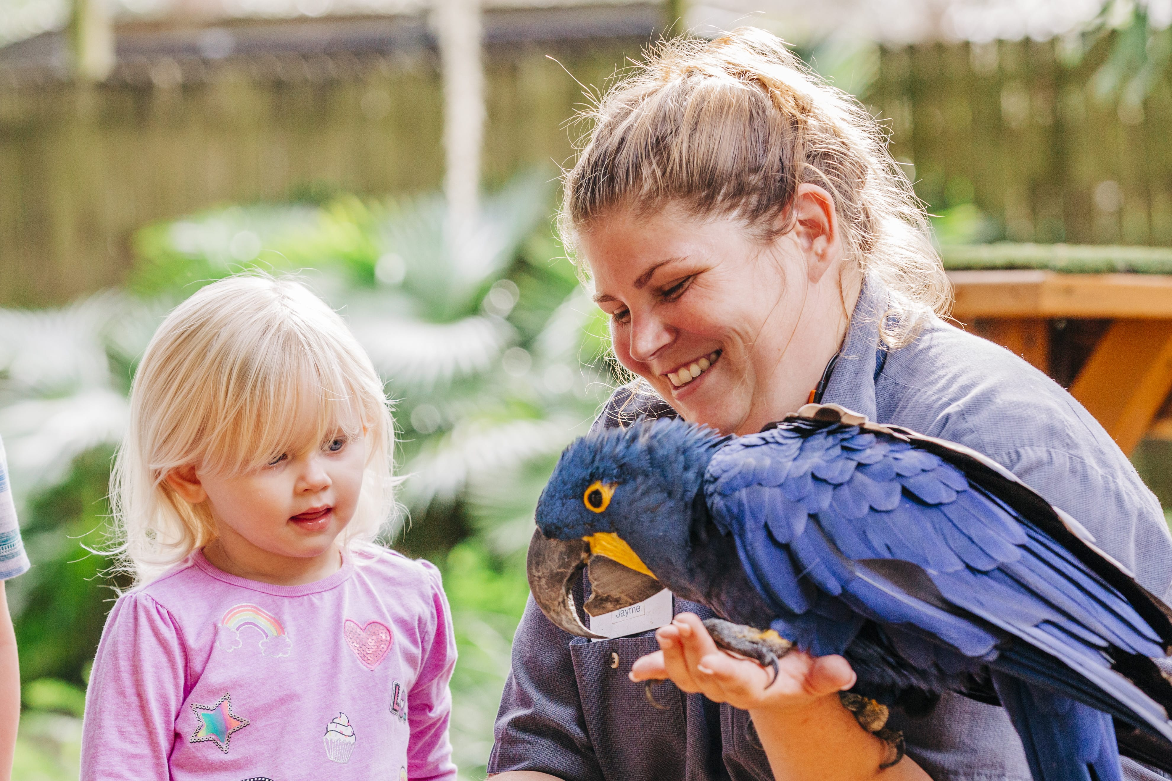 Toddler Tuesdays - ZooTampa at Lowry Park