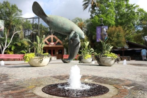 Explore The Zoo - ZooTampa at Lowry Park
