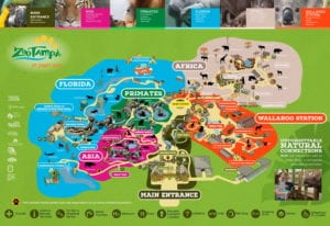 Lowry Park Zoo Map Park Areas | ZooTampa at Lowry Park