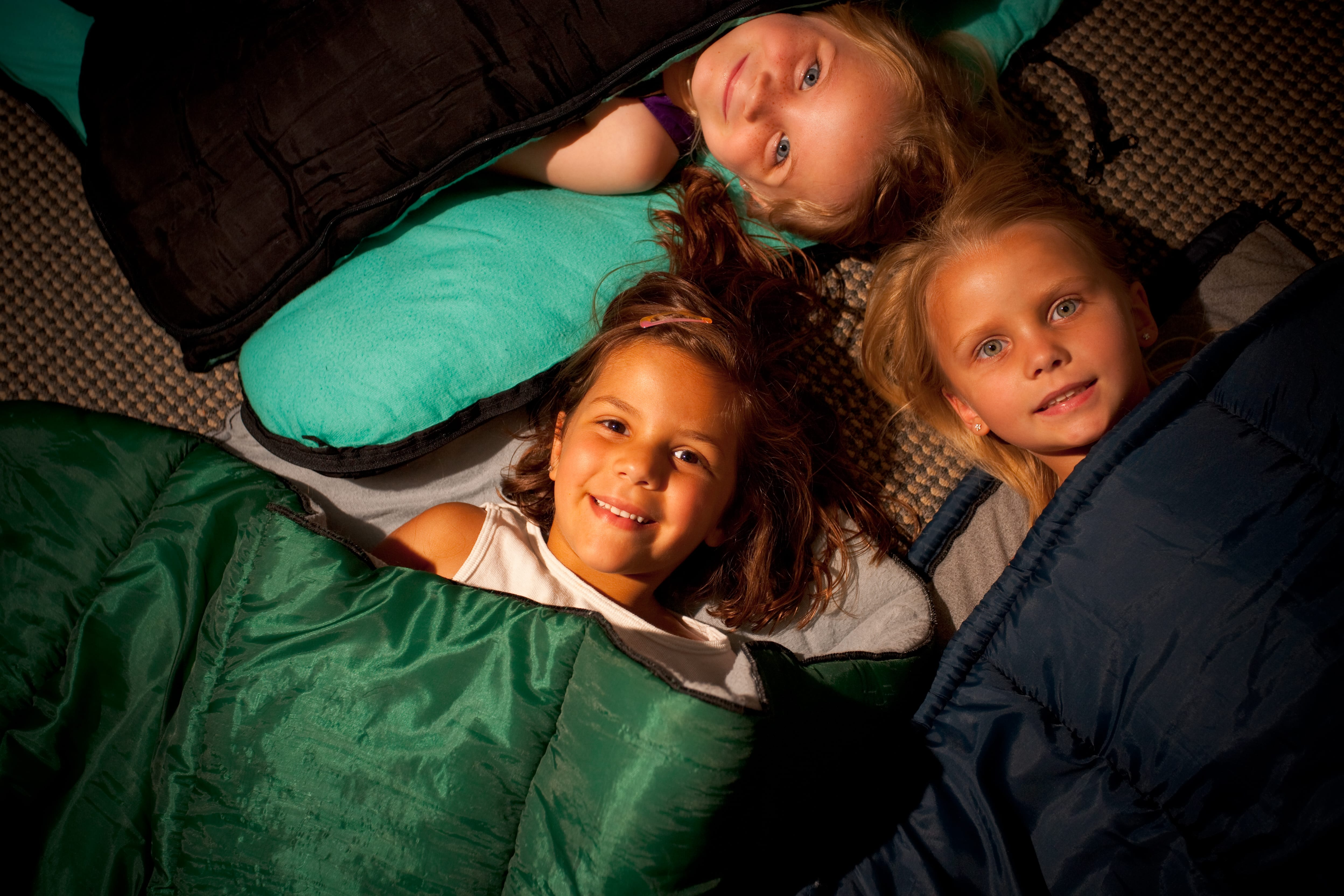 Sleepovers - ZooTampa at Lowry Park