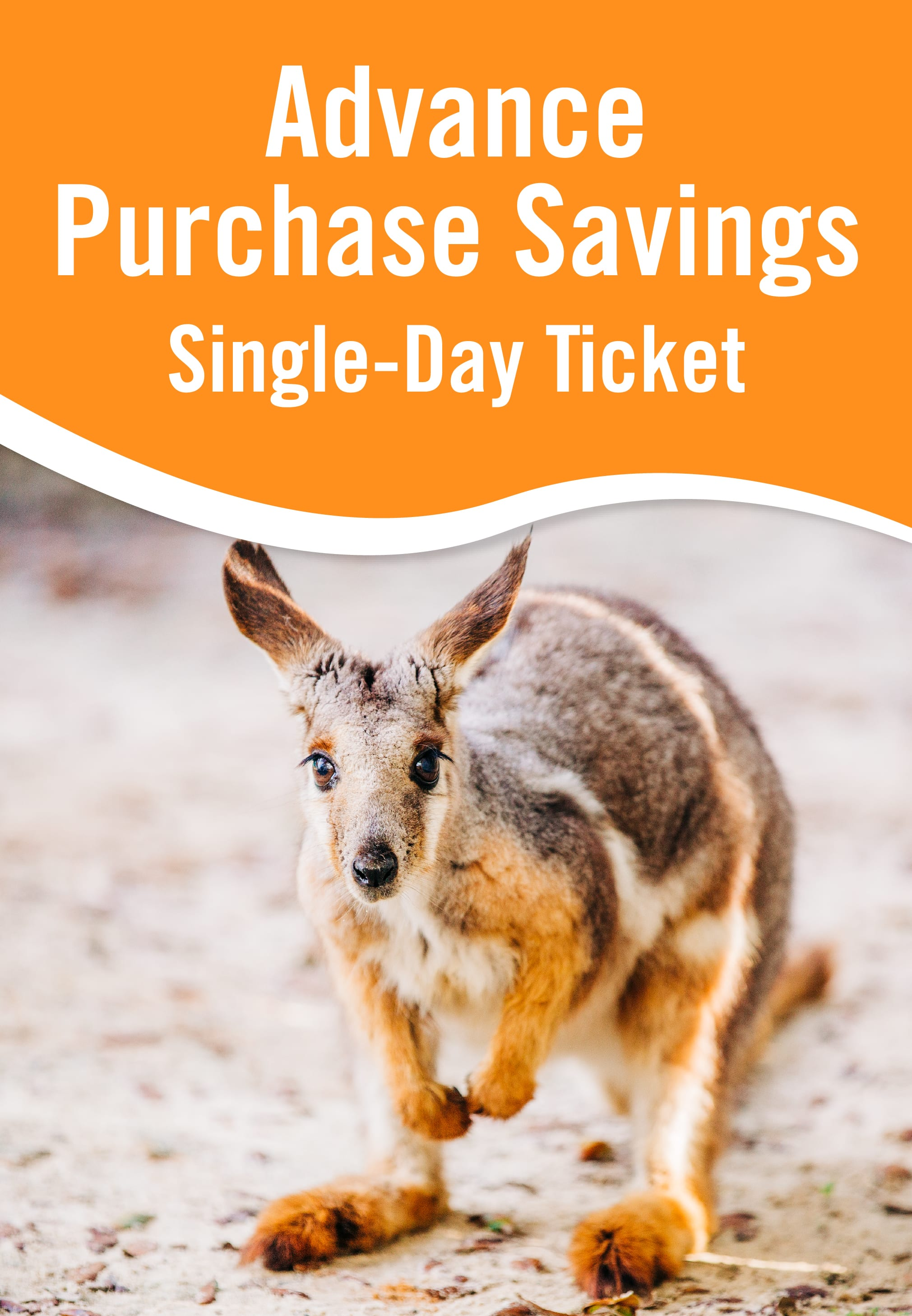 Admission Tickets - ZooTampa at Lowry Park