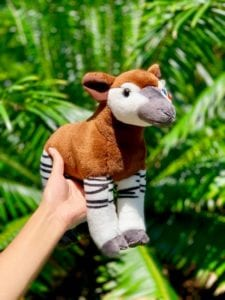 Endangered Species Day - Gift Shop Finds - ZooTampa at Lowry Park