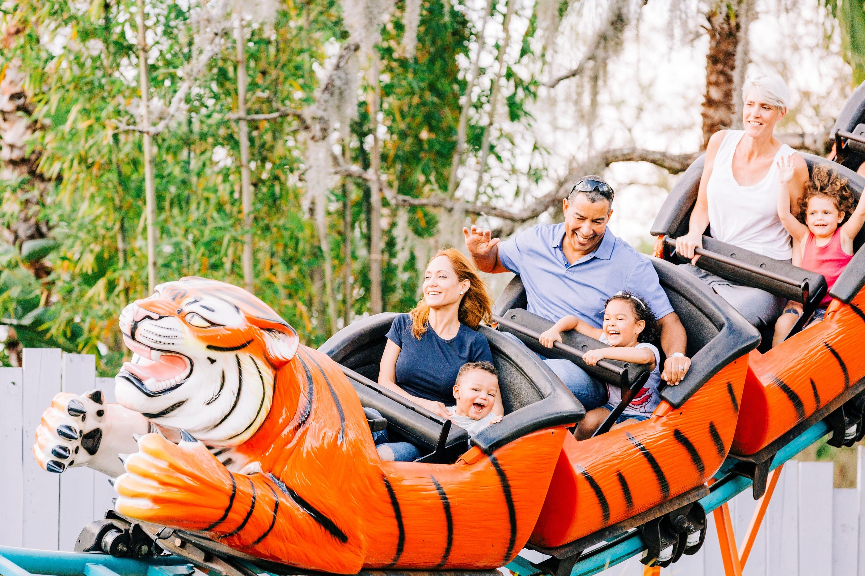 tiger roller coaster at zootampa