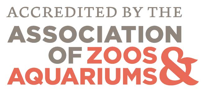 Logo for AZA - Accredited by the Association of Zoos and Aquariums