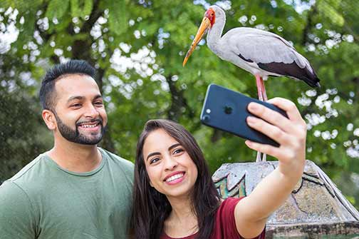 A couple takes a selfie with a large bird in an aviary at ZooTampa