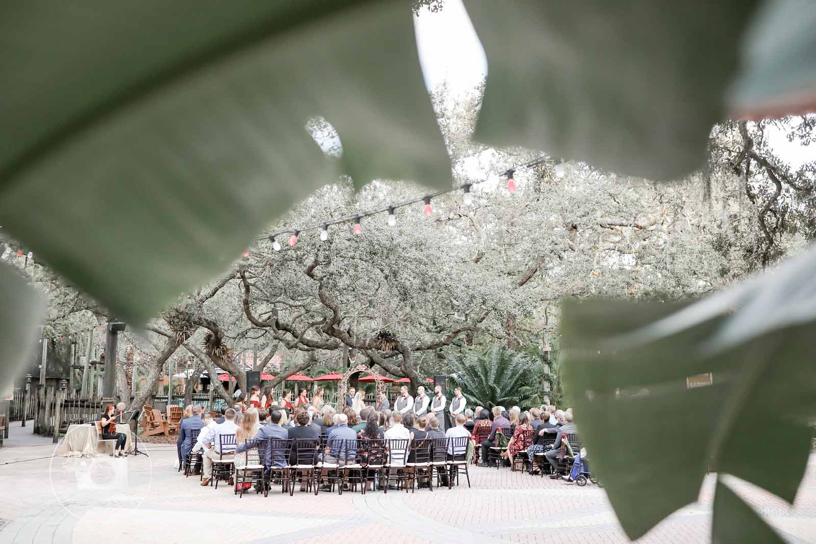 An outdoor wedding ceremony at the Zoo's Africa Circle