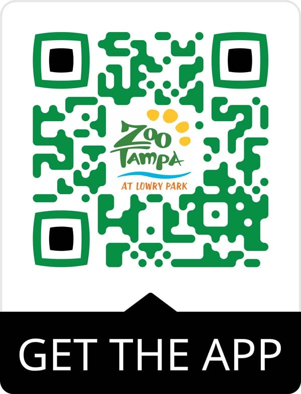 Scannable QR code to download the ZooTampa app from Apply Store and Google Play