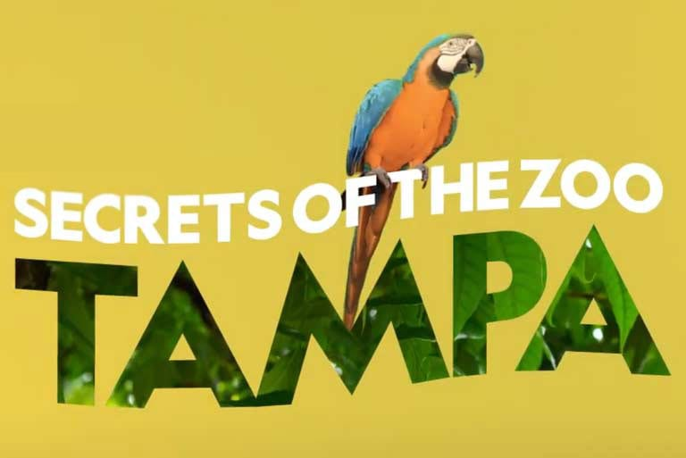 Secrets of the Zoo Tampa